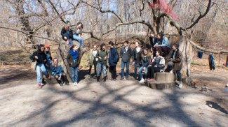 MakingFaking Nature Prospect Park Trip 3-29-17